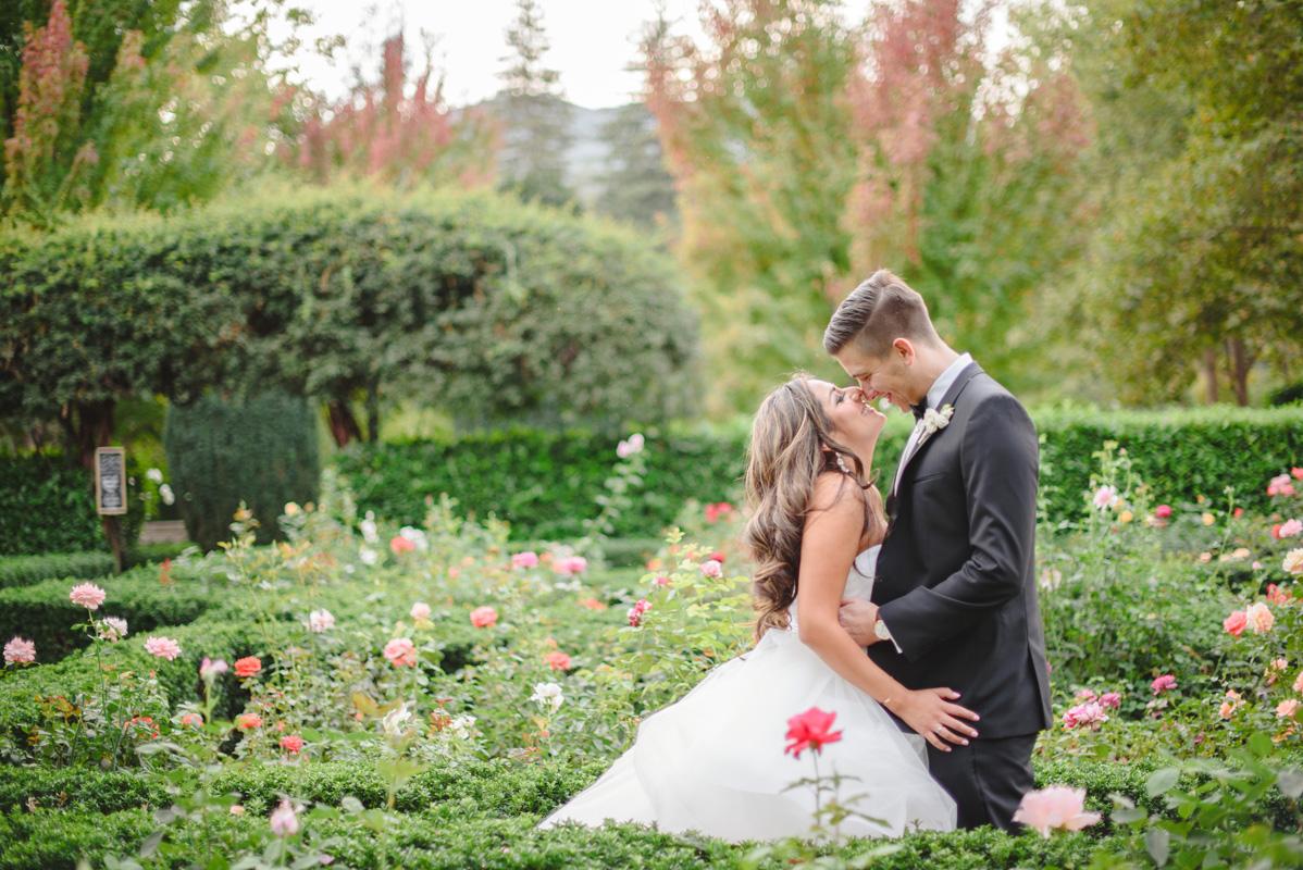Nathaly & Dan, Beaulieu Garden, Napa, CA